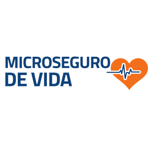 micro_seguro_de_vida.png